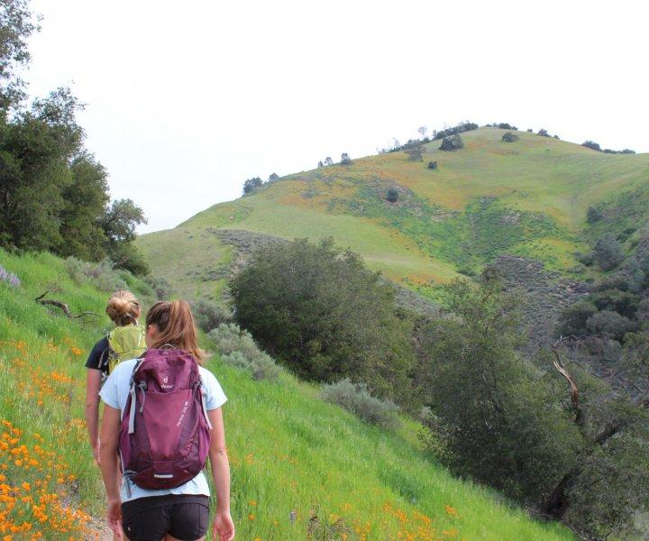 Students climb Grass Mountain (2019)